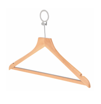 Anti-theft male hanger
